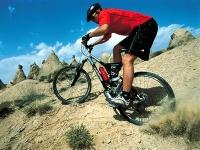 robinson-state-park-biking-ma