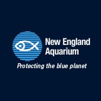 new england aquarium aquariums in ma