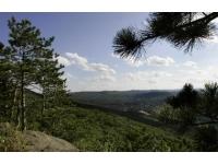 high-ledges-wildlife-sanctuary-ma