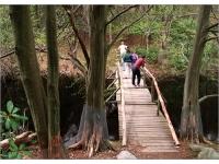 ipswich-river-wildlife-sanctuary-MA