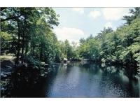 Noanet-Woodlands-ma