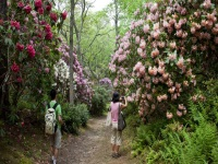 heritage-museum-and-gardens-gardens-and-arboretums-ma
