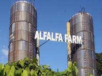 alfalfa-farm-winery-ma