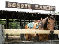 bobby's ranch horseback riding in ma