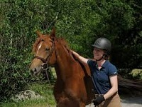 hillside meadows horseback riding in ma