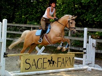 sage farm horseback riding in ma