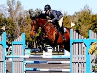 volo farm horseback riding in ma
